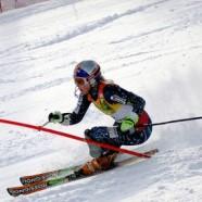 Il programma degli sport invernali