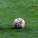 Juventus – Roma, il big match delle polemiche e delle assurdità