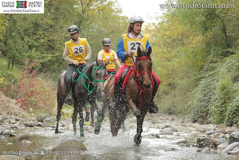 Coppa Regioni Endurance 2014, 1
