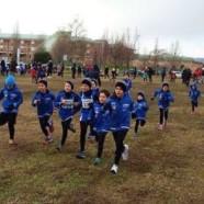 I risultati dei giovani dell'Atletica Avis Sansepolcro a Foligno