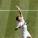 Wimbledon 2021 – Le motivazioni di Djokovic. Berrettini permettendo